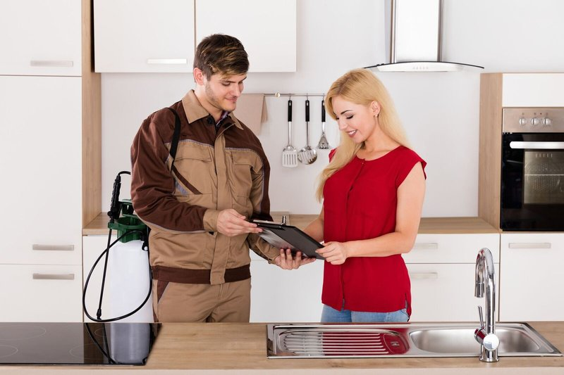 Tips for Hiring a Pest Control Company in Kelowna